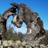 Hp_lovecraft_treelargemsg1198115819